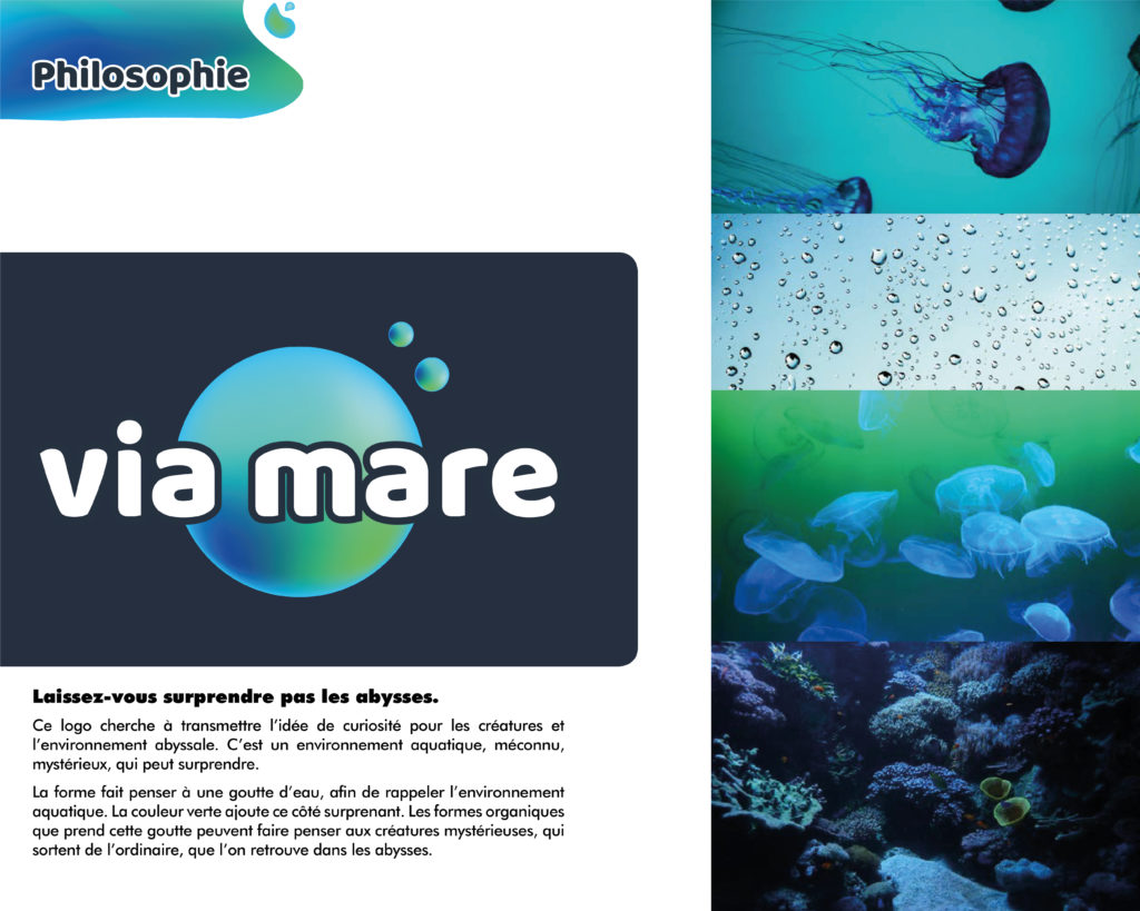 charte-graphique-via-mare-03